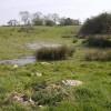 Pond at Hales Green