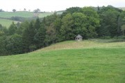 Field with hut near Bowhill