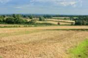 Fields near Crowshall Barn Farm