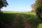 Farmland near Hayford Hall