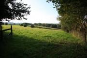 Farmland near Parklands Farm