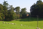Parkland, Chilton Foliat