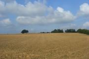 Farmland, Banbury