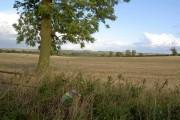 Farmland from Gallows Lane