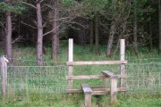 Stile and footpath through the wood