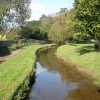 Mill stream, Ottery St Mary