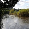 The River Wye near Lydbrook