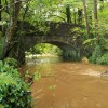 Chercombe Bridge