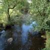Dusk Water