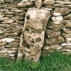 Standing Stone in Drystone wall.