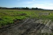 Farmland to the south of Fiddington