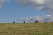 Bales near Bettisfield