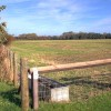 Pasture Near Dalton Bridge