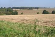 Looking E across farmland towards Calcott