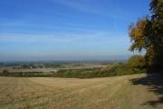 Farmland, Crowell