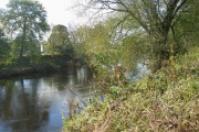 River Wear near Page Bank Bridge