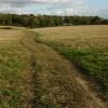 The Wychwood Way, Combe