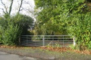 Woodland off Potman's Lane