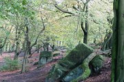 Beeches and Boulders