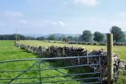 Wormhill - farmland NE of Mosley Farm