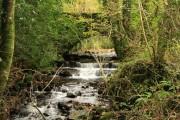 River Ashburn