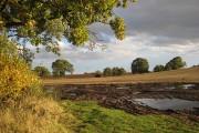 Farmland in autumn sunlight
