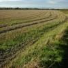 Stubble field near Fiddington