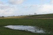 Wet land, Balmule
