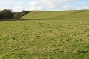 Grassland near Lochend