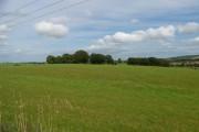 Looking over the fields towards Hillhead Farm