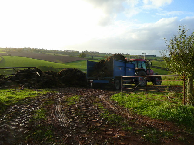 Muck ready for spreading