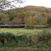 Farm scene in Autumn, Llandogo