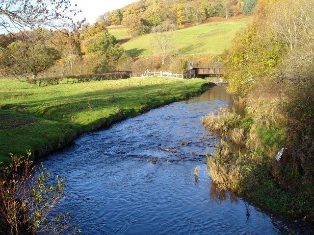 Afon Carno from Pont y Dreflan