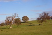 Pastures, Featherstone