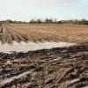 Potato field near Leconfield