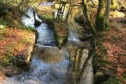 Dividing the River Harbourne