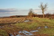 A wet field near Hutton Cranswick
