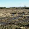 Field of stubble near Fieldhead