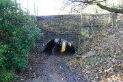 Bardsley Canal Bridge (East)