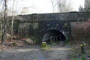 Bardsley Canal Bridge (West)