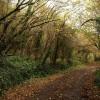 Whitehill Lane by Lidstone Quarry