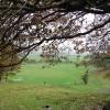 Farmland beside Bryn Glas