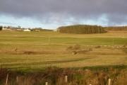 Blythe farmland
