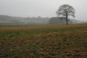 Farmland near Coildridge