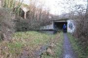 New Thames & Severn Canal bridge under Dr Newton's Way