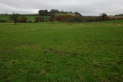 View across farmland to Coldridge