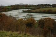Farmland near Coldridge