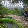 David Welch Winter Gardens