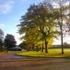 Trees in Duthie Park