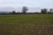 Flat field near Tibberton